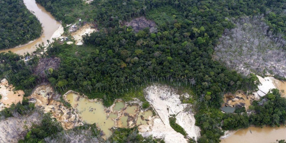 Venezuela apunta el mayor nivel de deforestación del mundo